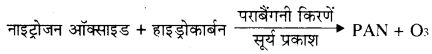 RBSE Solutions for Class 11 Biology Chapter 41 पर्यावरणीय प्रदूषण img-1