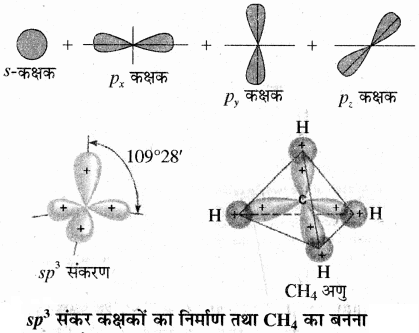 RBSE Solutions for Class 11 Chemistry Chapter 4 रासायनिक आबंधन तथा आण्विक संरचना img 21