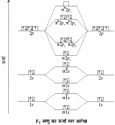 RBSE Solutions for Class 11 Chemistry Chapter 4 रासायनिक आबंधन तथा आण्विक संरचना img 53