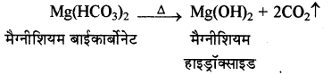 RBSE Solutions for Class 11 Chemistry Chapter 9 हाइड्रोजन img 9
