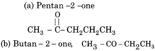 RBSE Solutions for Class 12 Chemistry Chapter 12 image 1