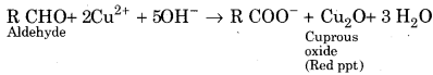 RBSE Solutions for Class 12 Chemistry Chapter 12 image 7