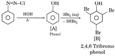 RBSE Solutions for Class 12 Chemistry Chapter 13 Organic Compounds with Functional Group-Containing Nitrogen image 1