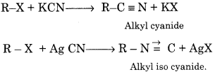RBSE Solutions for Class 12 Chemistry Chapter 13 Organic Compounds with Functional Group-Containing Nitrogen image 14