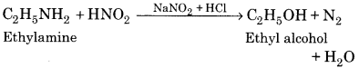 RBSE Solutions for Class 12 Chemistry Chapter 13 Organic Compounds with Functional Group-Containing Nitrogen image 5