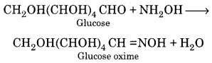 RBSE Solutions for Class 12 Chemistry Chapter 14 Bio-Molecules image 15