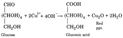 RBSE Solutions for Class 12 Chemistry Chapter 14 Bio-Molecules image 17