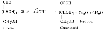 RBSE Solutions for Class 12 Chemistry Chapter 14 Bio-Molecules image 3