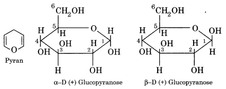RBSE Solutions for Class 12 Chemistry Chapter 14 Bio-Molecules image 7