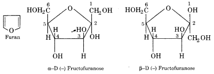 RBSE Solutions for Class 12 Chemistry Chapter 14 Bio-Molecules image 8