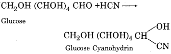 RBSE Solutions for Class 12 Chemistry Chapter 14 Bio-Molecules image 14