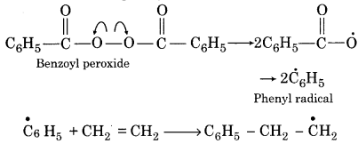 RBSE Solutions for Class 12 Chemistry Chapter 15 Polymers image 16