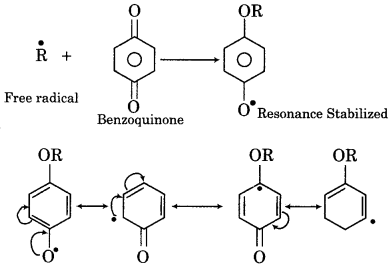 RBSE Solutions for Class 12 Chemistry Chapter 15 Polymers image 6