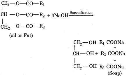 RBSE Solutions for Class 12 Chemistry Chapter 17 Chemistry in Daily Life image 1