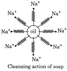 RBSE Solutions for Class 12 Chemistry Chapter 17 Chemistry in Daily Life image 10