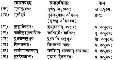 RBSE Solutions for Class 12 Sanskrit विजेत्री Chapter 5 मेघदूतपीयूषम् 14