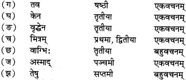 RBSE Solutions for Class 12 Sanskrit विजेत्री Chapter 5 मेघदूतपीयूषम् 17