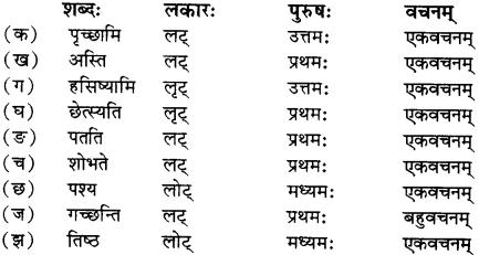 RBSE Solutions for Class 12 Sanskrit विजेत्री Chapter 5 मेघदूतपीयूषम् 18