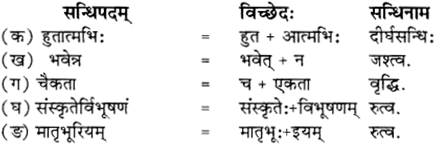RBSE Solutions for Class 12 Sanskrit विजेत्र Chapter 12 मातृवन्दना-गीतिः 2