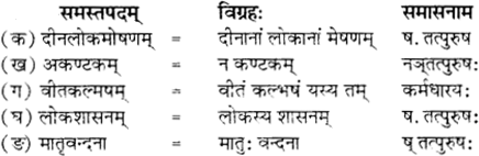RBSE Solutions for Class 12 Sanskrit विजेत्र Chapter 12 मातृवन्दना-गीतिः 3