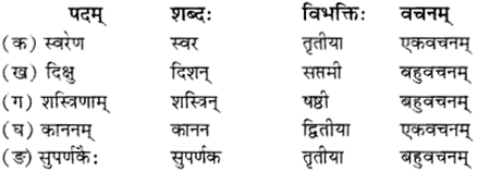 RBSE Solutions for Class 12 Sanskrit विजेत्र Chapter 12 मातृवन्दना-गीतिः 4