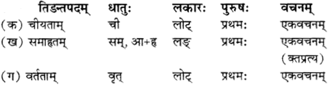 RBSE Solutions for Class 12 Sanskrit विजेत्र Chapter 12 मातृवन्दना-गीतिः 5