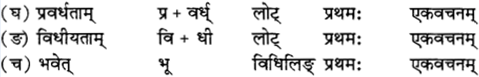 RBSE Solutions for Class 12 Sanskrit विजेत्र Chapter 12 मातृवन्दना-गीतिः 6