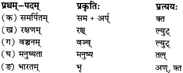 RBSE Solutions for Class 12 Sanskrit विजेत्र Chapter 12 मातृवन्दना-गीतिः 7