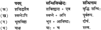 RBSE Solutions for Class 12 Sanskrit विजेत्र Chapter 13 सङ्घ शक्तिः 1