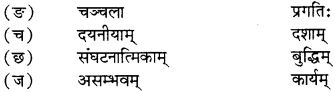 RBSE Solutions for Class 12 Sanskrit विजेत्र Chapter 13 सङ्घ शक्तिः 10