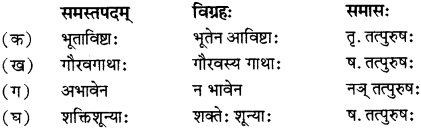 RBSE Solutions for Class 12 Sanskrit विजेत्र Chapter 13 सङ्घ शक्तिः 2