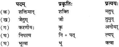 RBSE Solutions for Class 12 Sanskrit विजेत्र Chapter 13 सङ्घ शक्तिः 4