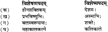 RBSE Solutions for Class 12 Sanskrit विजेत्र Chapter 13 सङ्घ शक्तिः 9