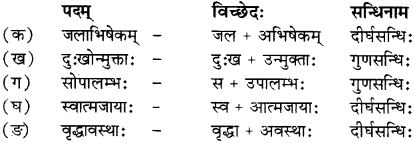 RBSE Solutions for Class 12 Sanskrit विजेत्र Chapter 14 पितामही मिलिता 1