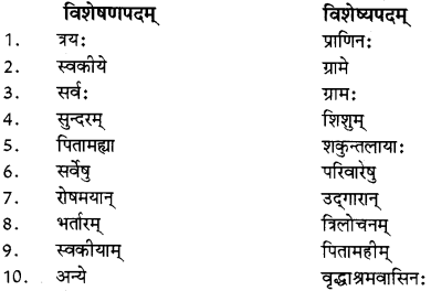RBSE Solutions for Class 12 Sanskrit विजेत्र Chapter 14 पितामही मिलिता 10