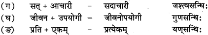 RBSE Solutions for Class 12 Sanskrit विजेत्र Chapter 14 पितामही मिलिता 3