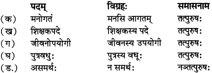 RBSE Solutions for Class 12 Sanskrit विजेत्र Chapter 14 पितामही मिलिता 4