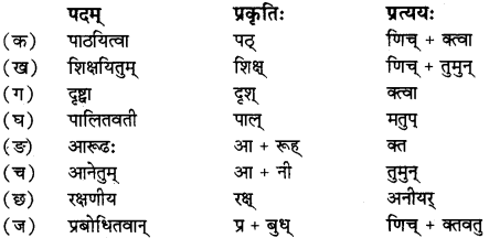 RBSE Solutions for Class 12 Sanskrit विजेत्र Chapter 14 पितामही मिलिता 5