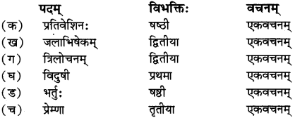 RBSE Solutions for Class 12 Sanskrit विजेत्र Chapter 14 पितामही मिलिता 6