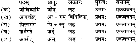 RBSE Solutions for Class 12 Sanskrit विजेत्र Chapter 14 पितामही मिलिता 7