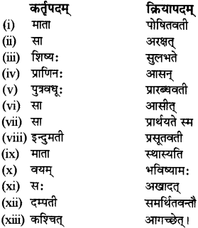 RBSE Solutions for Class 12 Sanskrit विजेत्र Chapter 14 पितामही मिलिता 9