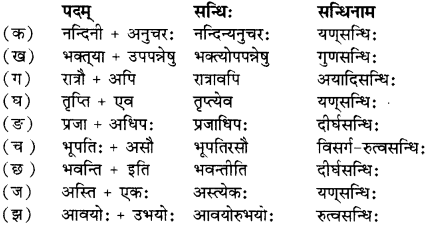 RBSE Solutions for Class 12 Sanskrit विजेत्र Chapter 7 नन्दिनीकथा 1