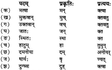 RBSE Solutions for Class 12 Sanskrit विजेत्र Chapter 7 नन्दिनीकथा 6