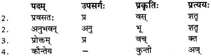 RBSE Solutions for Class 12 Sanskrit विजेत्र Chapter 8 यक्ष-युधिष्ठिरयो संवादः 3