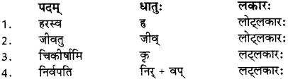 RBSE Solutions for Class 12 Sanskrit विजेत्र Chapter 8 यक्ष-युधिष्ठिरयो संवादः 5