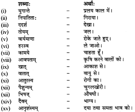 RBSE Solutions for Class 12 Sanskrit विजेत्र Chapter 8 यक्ष-युधिष्ठिरयो संवादः 6