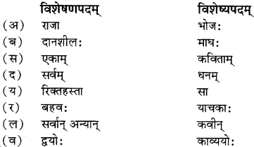 RBSE Solutions for Class 12 Sanskrit विजेत्र Chapter 9 महाकविः माघः 13