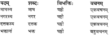 RBSE Solutions for Class 12 Sanskrit विजेत्र Chapter 9 महाकविः माघः 2