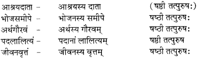 RBSE Solutions for Class 12 Sanskrit विजेत्र Chapter 9 महाकविः माघः 5