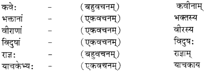 RBSE Solutions for Class 12 Sanskrit विजेत्र Chapter 9 महाकविः माघः 7